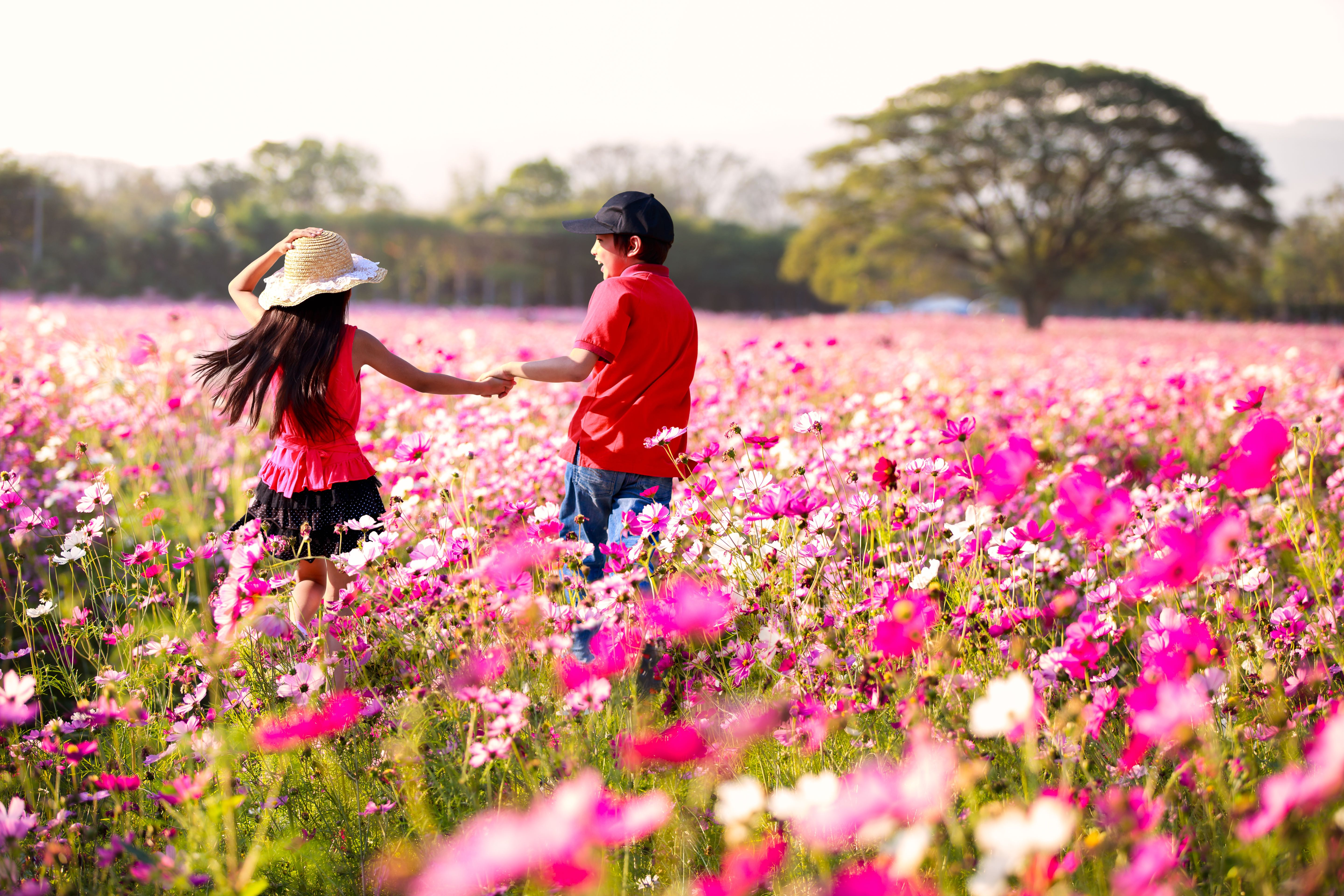 Website Image Kids Playing In Pink Field An Apple A Day Your